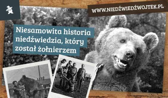 Niedźwiedź Wojtek w wersji pluszowej pojawił się w ofercie firmy Axiom.